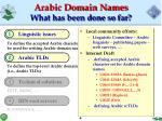 arabic domain names what has been done so far