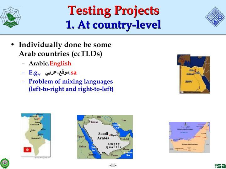 Individually done be some Arab countries (ccTLDs)