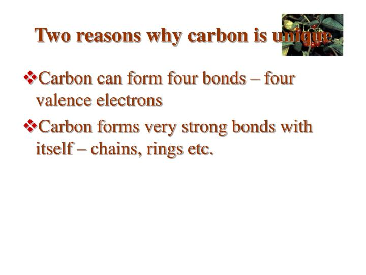 Two reasons why carbon is unique