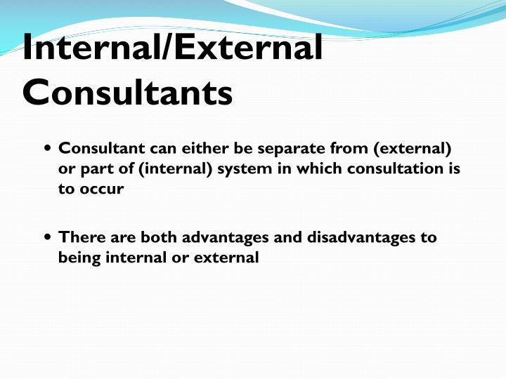Internal/External Consultants