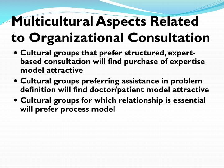 Multicultural Aspects Related to Organizational Consultation