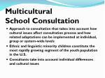 multicultural school consultation