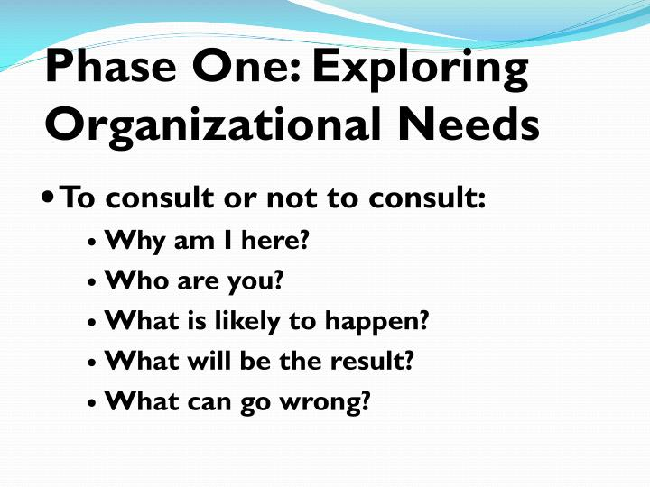 Phase One: Exploring Organizational Needs