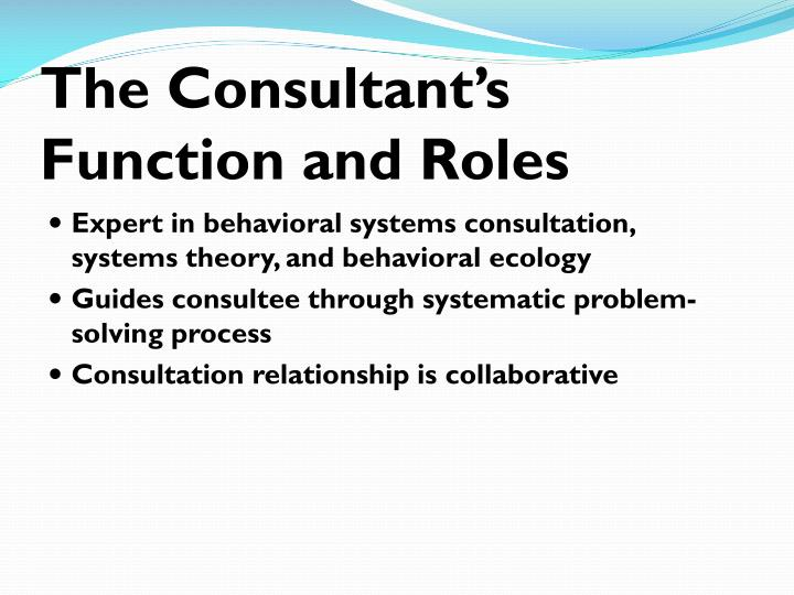 The Consultant's Function and Roles