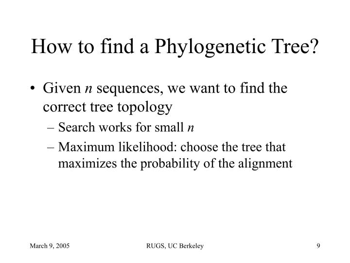 How to find a Phylogenetic Tree?