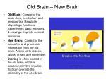 old brain new brain