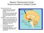 reward reinforcement center nucleus accubens satiation center