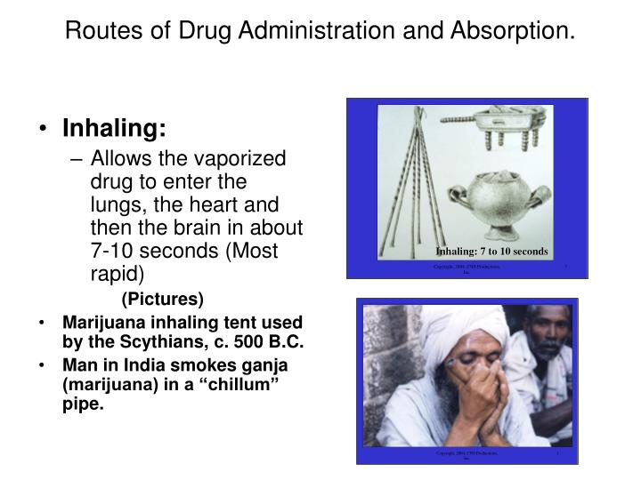 Routes of Drug Administration and Absorption.