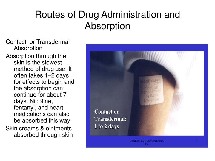 Routes of Drug Administration and Absorption