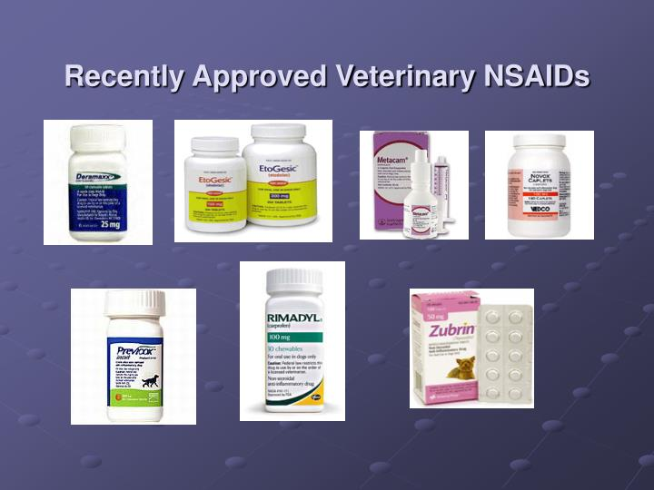 Recently Approved Veterinary NSAIDs