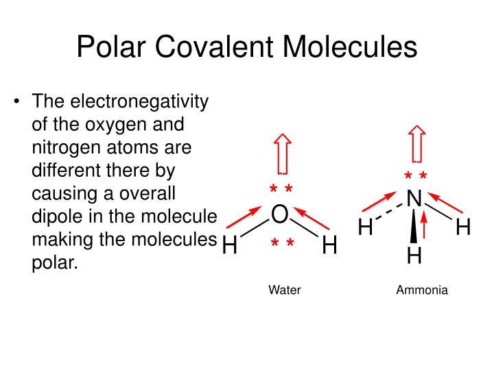 Polar Covalent Molecules