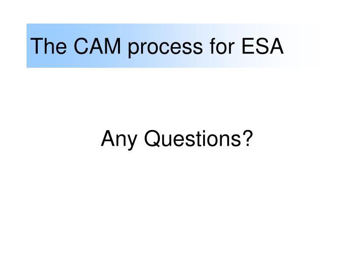 The CAM process for ESA