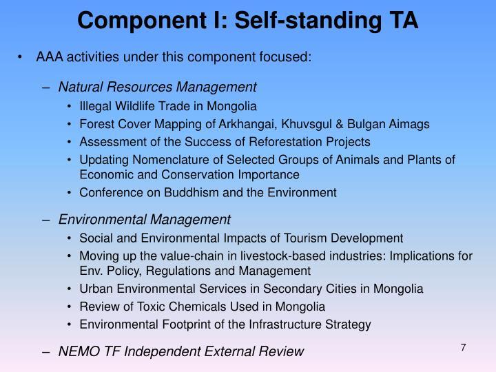 Component I: Self-standing TA