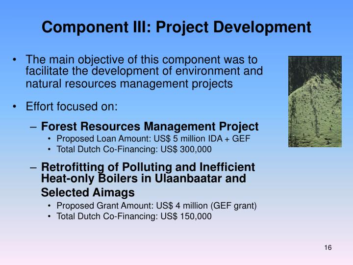 Component III: Project Development
