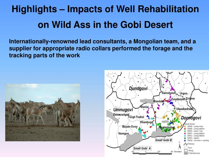 Highlights – Impacts of Well Rehabilitation on Wild Ass in the Gobi Desert