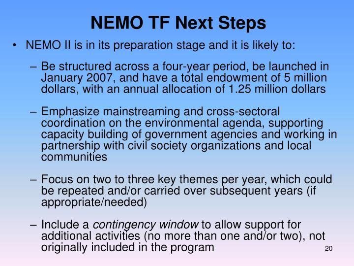 NEMO TF Next Steps