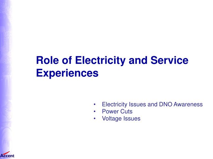 Role of Electricity and Service Experiences