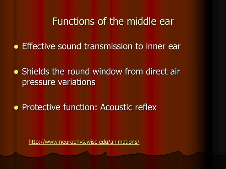 Functions of the middle ear