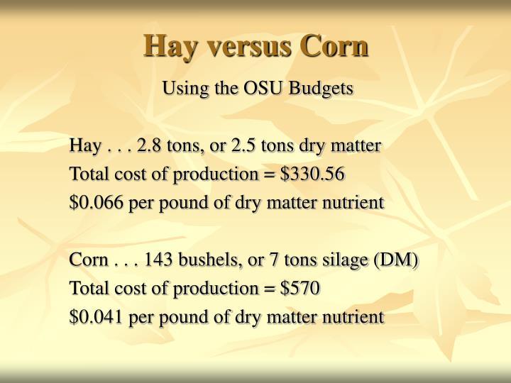 Hay versus Corn