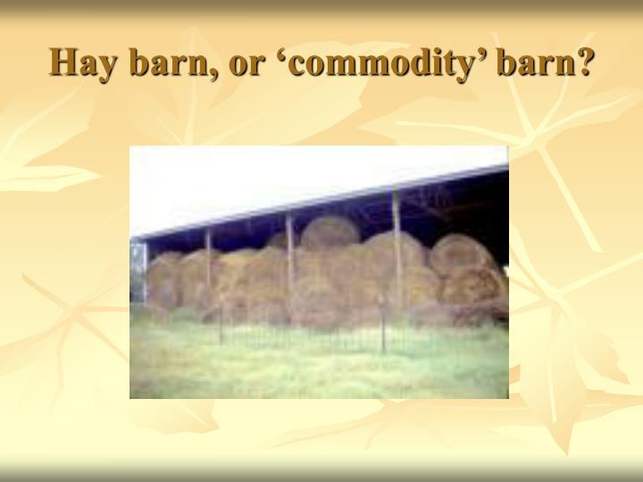 Hay barn, or 'commodity' barn?