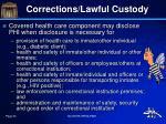 corrections lawful custody1