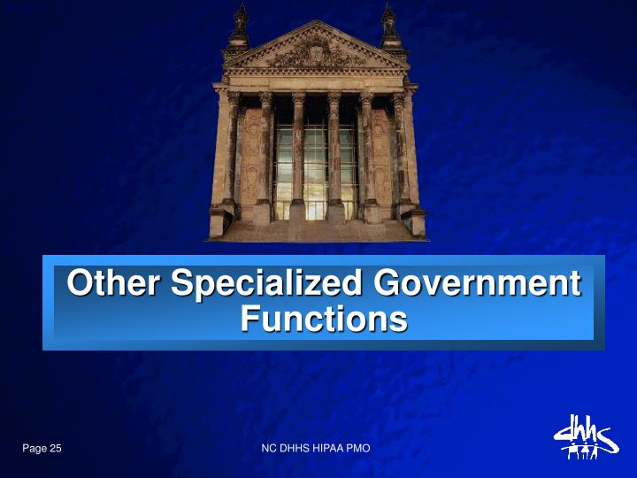 Other Specialized Government Functions