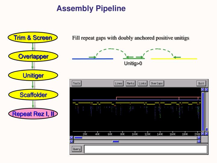 Assembly Pipeline