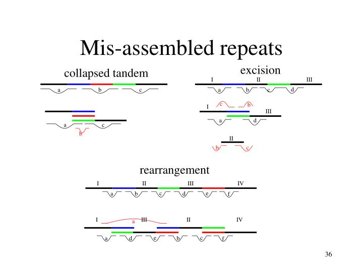Mis-assembled repeats
