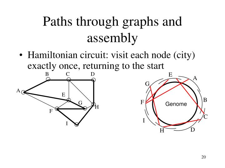 Paths through graphs and assembly