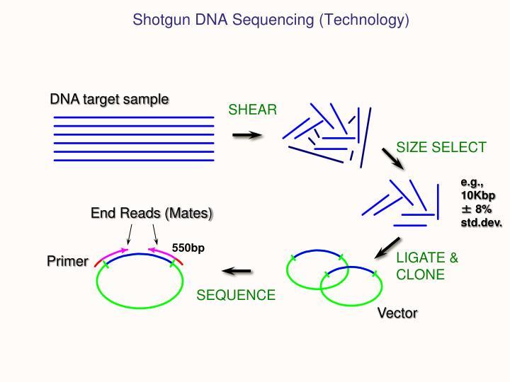 Shotgun DNA Sequencing (Technology)