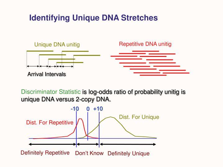 Identifying Unique DNA Stretches