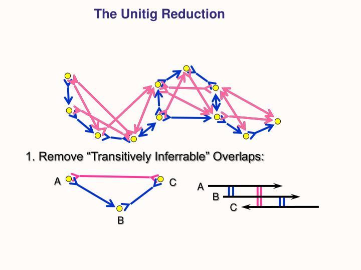 The Unitig Reduction