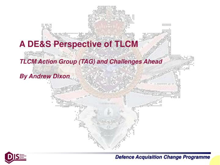 A DE&S Perspective of TLCM