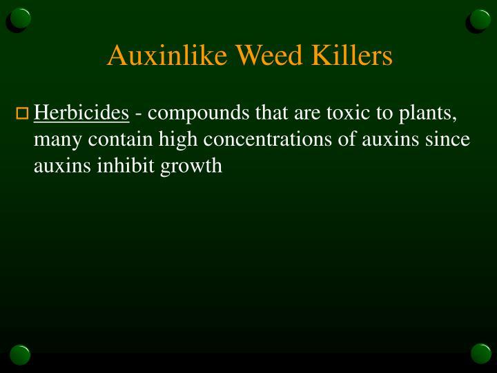 Auxinlike Weed Killers