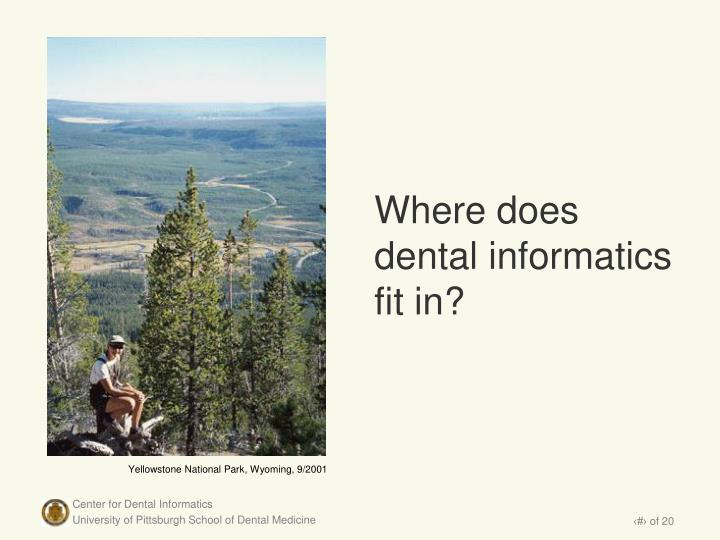 Where does dental informatics fit in?