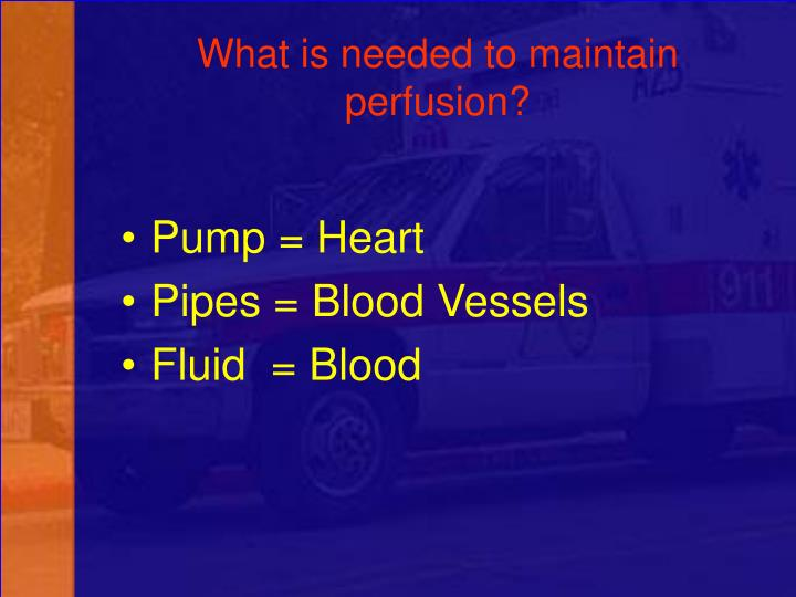 What is needed to maintain perfusion?