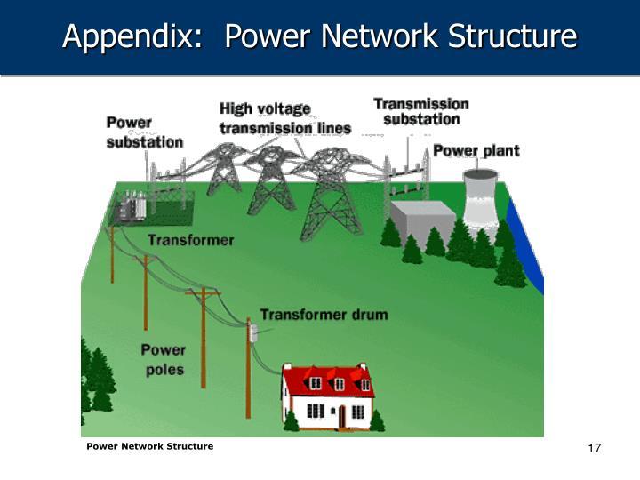 Appendix:  Power Network Structure