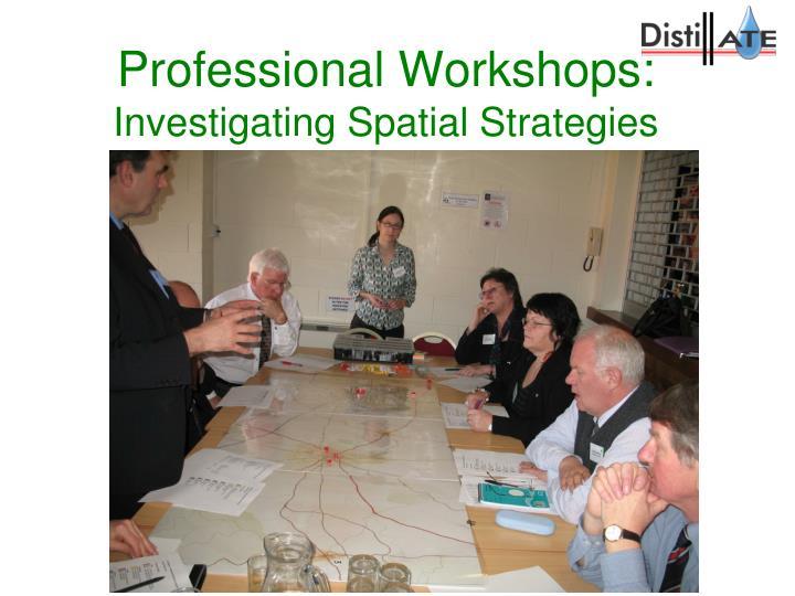Professional Workshops: