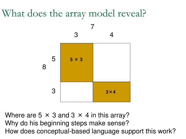 What does the array model reveal?