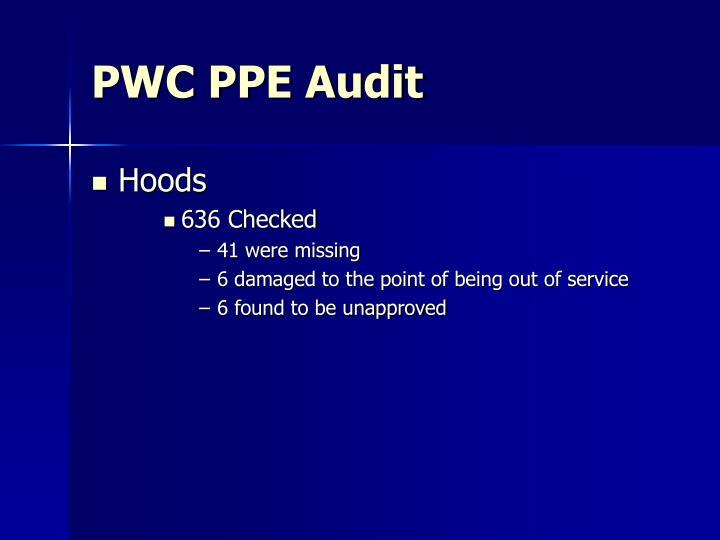 PWC PPE Audit