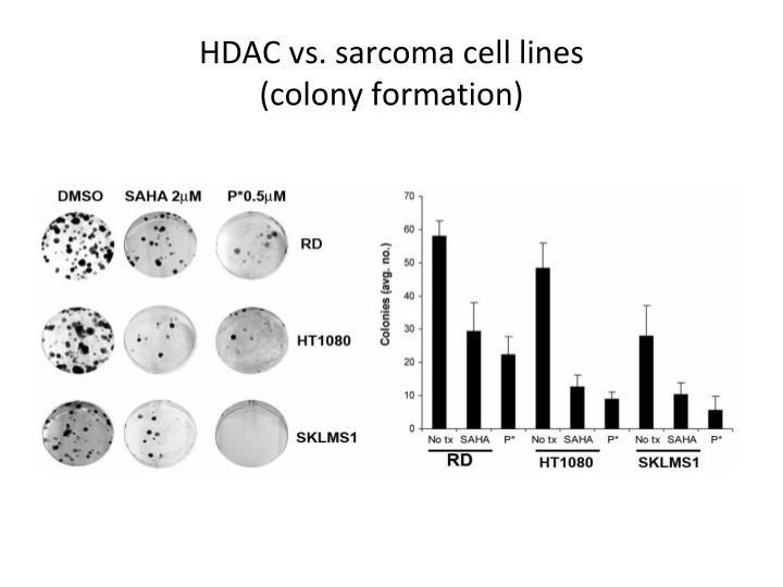 HDAC vs. sarcoma cell lines