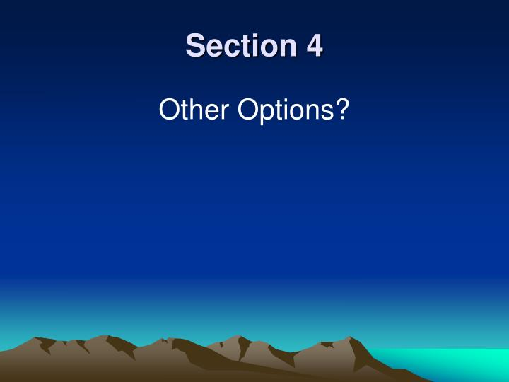 Section 4