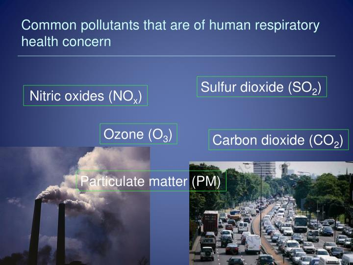 Common pollutants that are of human respiratory health concern