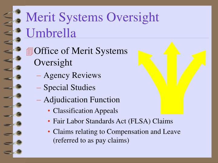Merit Systems Oversight Umbrella