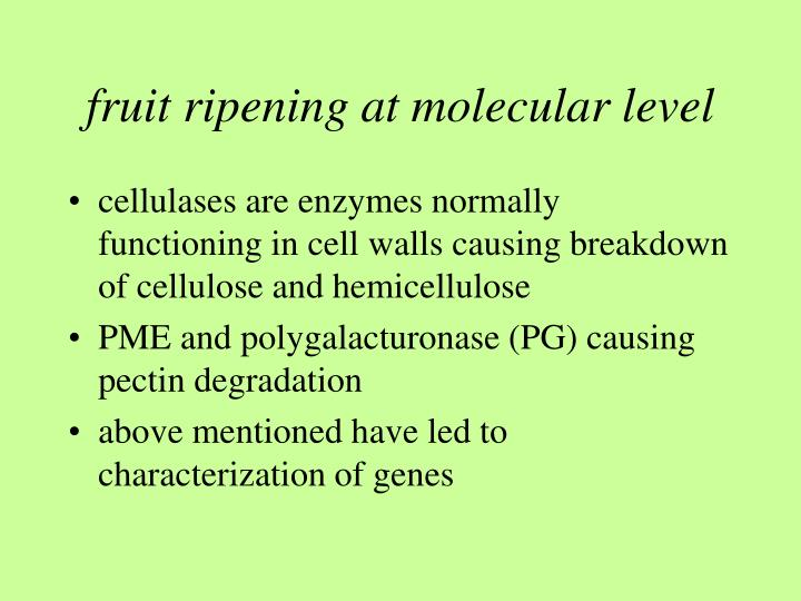 Role of pectic enzymes in fruit ripening process