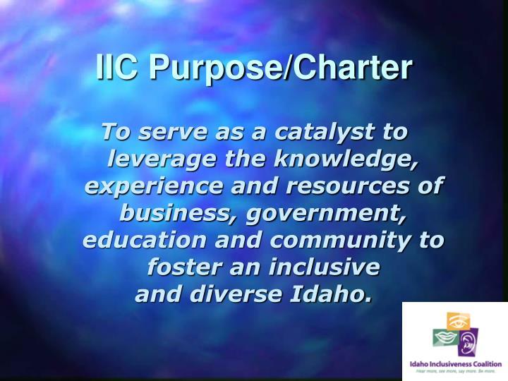 IIC Purpose/Charter
