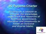iic purpose charter