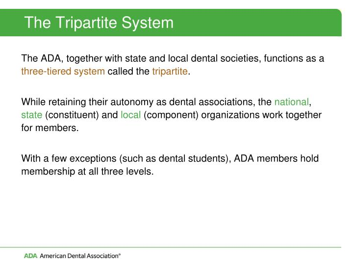 The Tripartite System