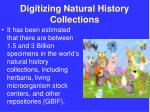 digitizing natural history collections