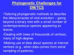 phylogenetic challenges for dm tcs